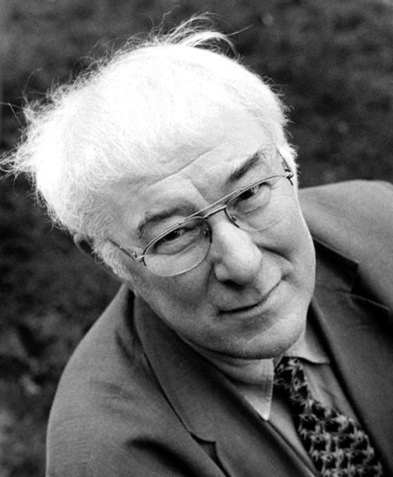 piquancies and attributes in seamus heaney s verve rain taxi piquancies and attributes in seamus heaney s verve