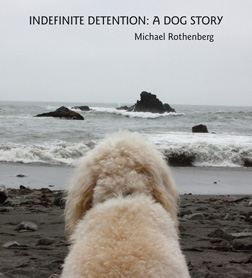 indefinite detention cover